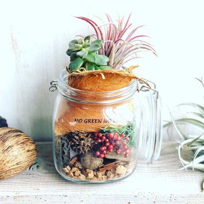 「多肉植物と木の実のテラリウム」作り
