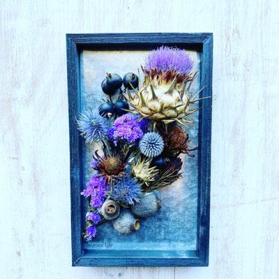 8月1dayレッスン『アーティチョークの植物標本』作り