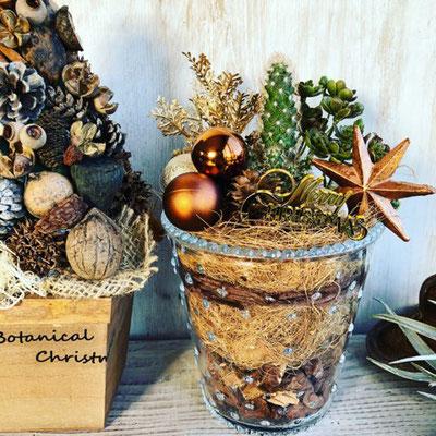 11月 長野 飯田1dayレッスン『木の実のクリスマスツリー』&『サボテンを使ったクリスマステラリウム』