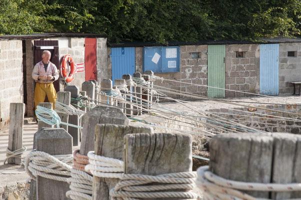 Vieux loup de mer Port Racine Cotentin