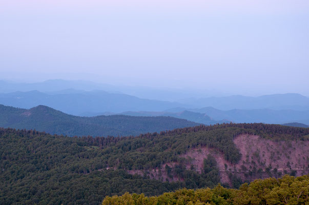 Teintes. Monts Aigoual