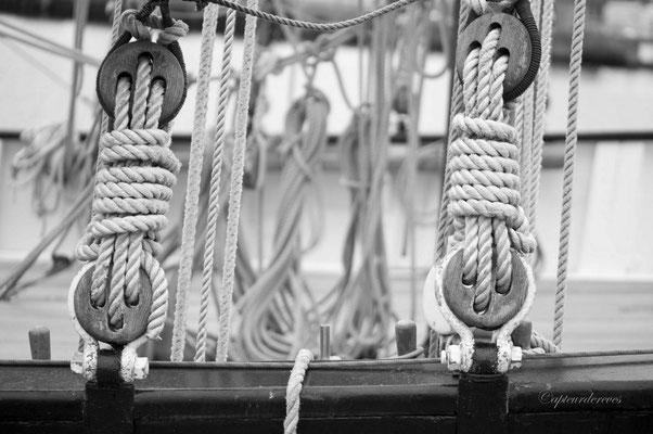 Défaire les nœuds mouillés...vous avez tout votre dimanche pour.....
