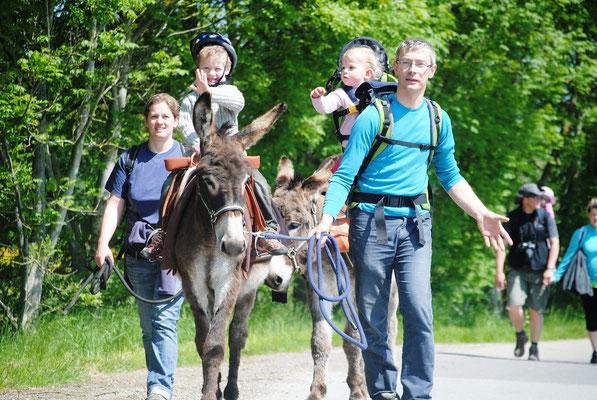 Promenade en ânes au départ du gîte