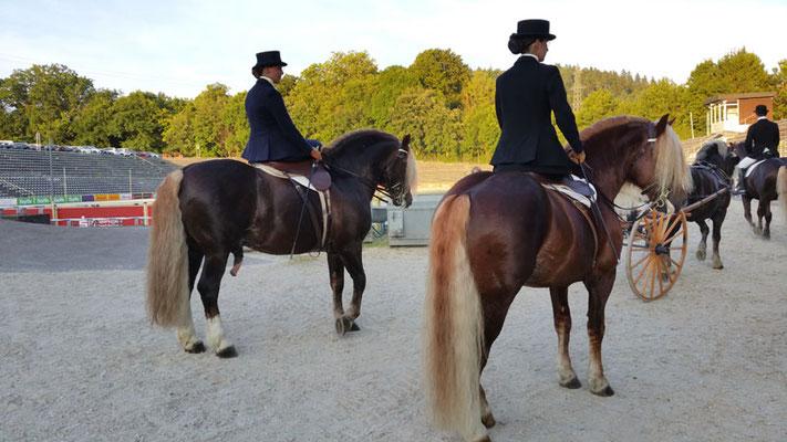 RID Reiten im Damensattel, Haupt- und Landesgestüt Marbach, Marbach Classics