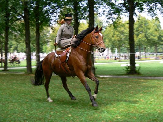 Jagd- und Kutschengala Schloß Schleißheim
