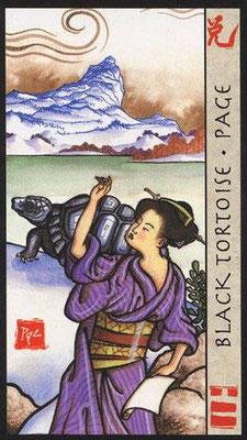 Page de la Tortue Noire - Le Tarot Feng Shui