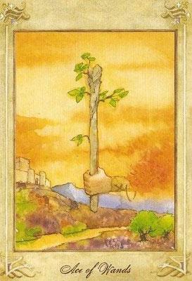 As de Bâtons - Llewellyn Tarot