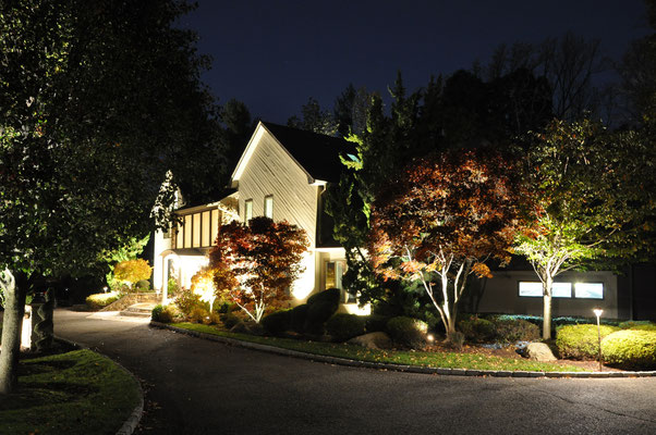 Although the home is the primary focal point, whenever it's facade is illuminated, each of the uplit trees along the driveway will beg for your attention as you approach the front door.