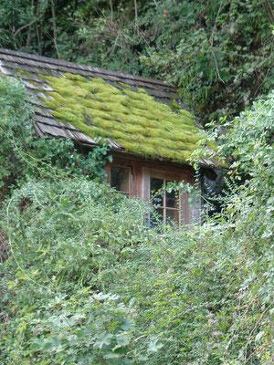 Hallstadt_romantische Hütte