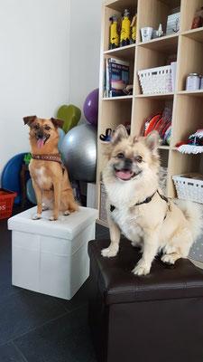 Elli und Momo