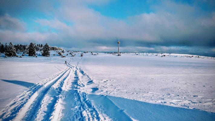 Winterwald auf der Plettenberghochfläche