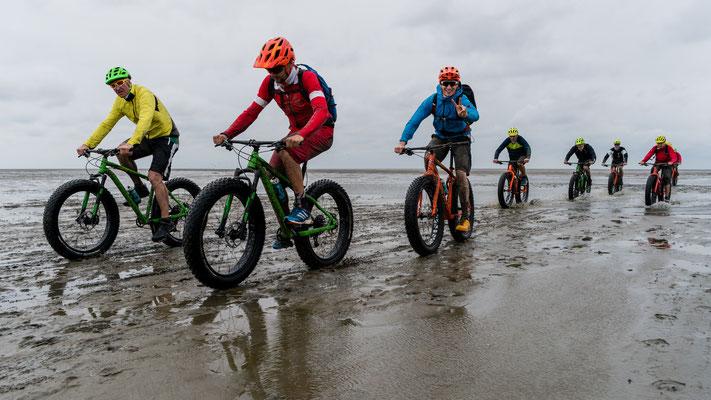 Mountain bikers during low tide between Cuxhaven and Neuwerk