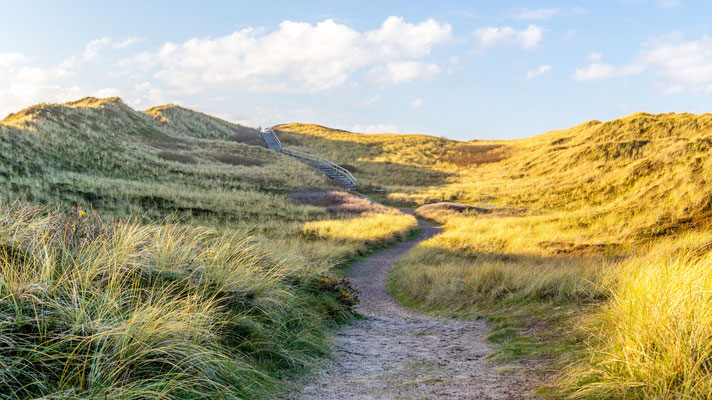 Hiking trail on Sylt, Germany, with some sun acting as leading line