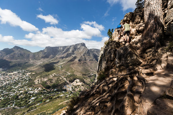 Hiking up Lion's Head facing Table Mountain