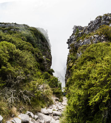 Looking down Platteklip Gorge of Table Mountain, Capetown