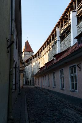 City wall of Tallinn