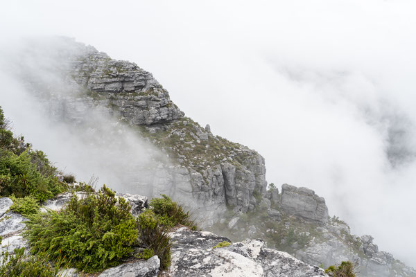 Table Mountain cloth