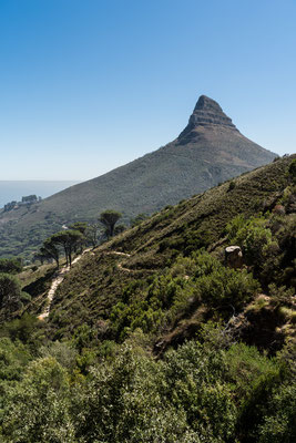 Lion's Head seen from Pipe Track, Capetown