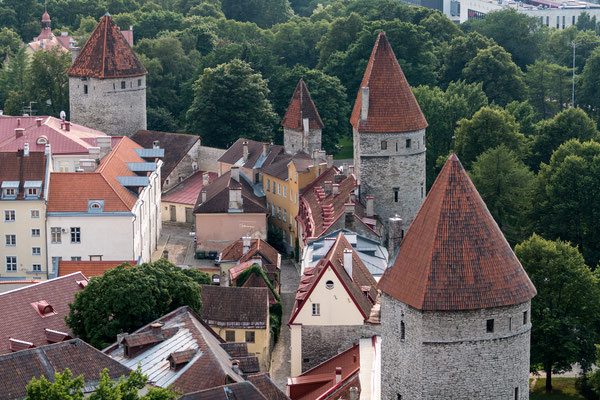 View of Tallinn's city wall from St. Olaf's church