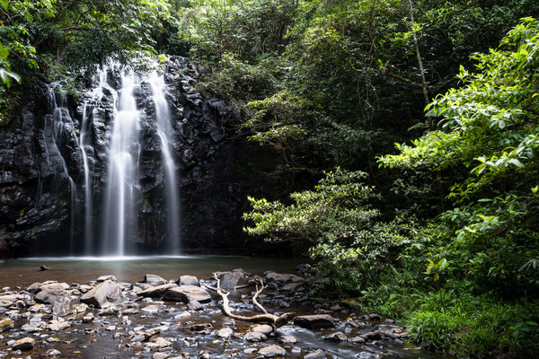 Ellinjaa Falls at the Atherton Tablelands, Queensland, Australia