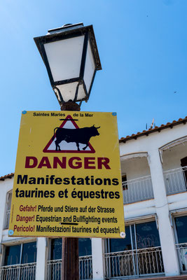 Tourists getting a warning about horses and bulls on the streets during certain times of the year