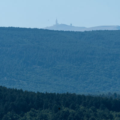 Looking at Mont Ventoux from Vaucluse region
