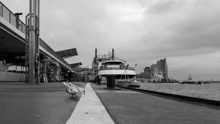 Landungsbrücken at the Port of Hamburg