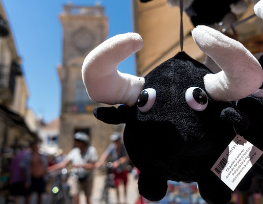 Bulls are everywhere in Saintes-Maries-de-la-Mer.