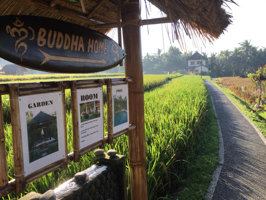 Entrance to Buddha home stay