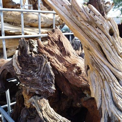 Wurzelholz Skulpturen Wüstenholz Namibia Uraltes Holz aus der Wüste