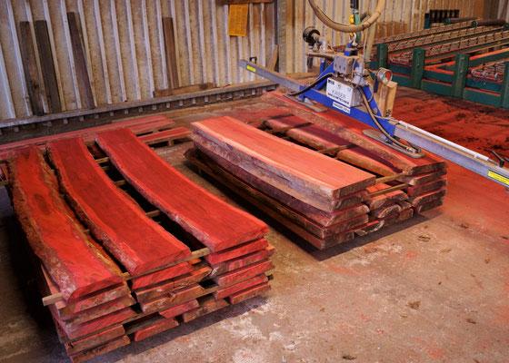 Chakte Kok fresh sawn lumber