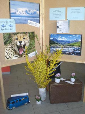 """In der Eingangshalle wurde man mit wunderschönen  Bildern """"aus aller Welt"""" empfangen."""