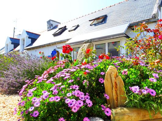 Ferienhaus Dodo Bretagne