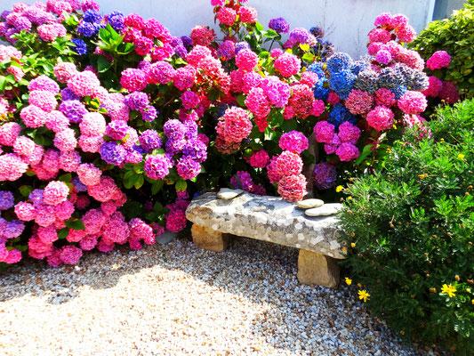 Gemuetlicher Garten Maison Dodo
