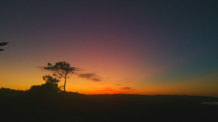 Sonnenaufgang im Garten