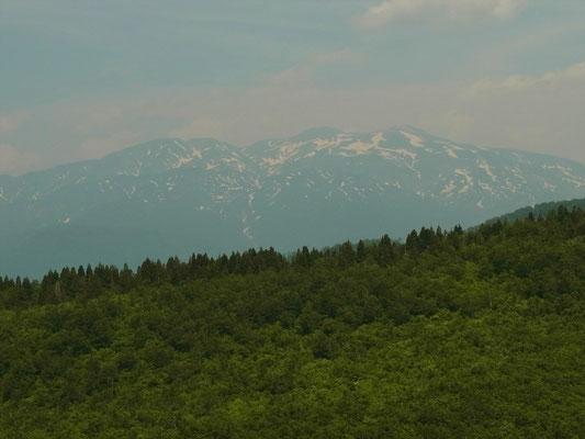 取立山山頂から白山アップ、まだ少し残雪がありますね。