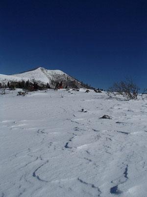 雪原の向こうに見えるのが武奈ヶ岳