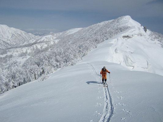 登り返して稜線へ。バックは縫ケ原山。