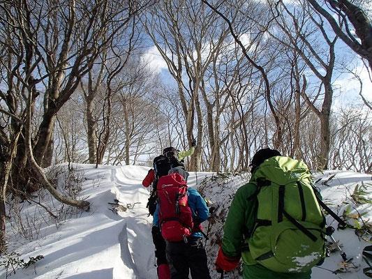 黒河峠からは県境尾根(高島トレイル)を歩きます