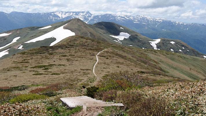 さあ、平標山に向かいましょう。木道の両側はお花畑です。