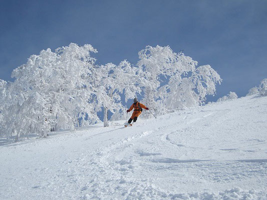 青空と樹氷といい滑り!