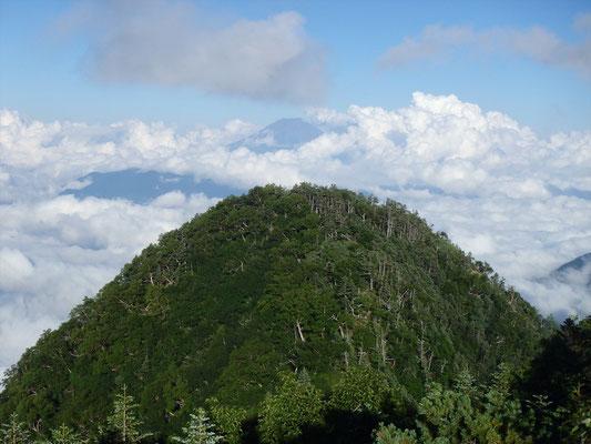 出たー!富士山と小笊♪見られて良かった