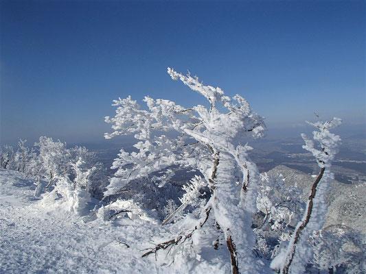 12まだ樹氷は落ちていません