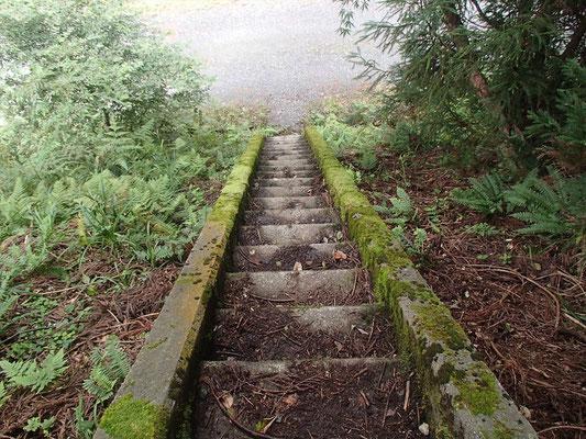 こんな階段を降りたら