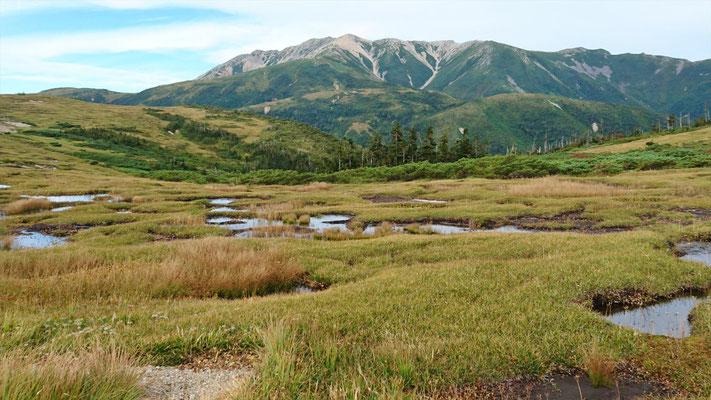 池塘と薬師岳(どこも絵になります)