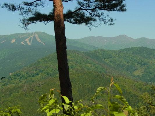 太師山山頂から法恩寺山(左)、経ケ岳(右)