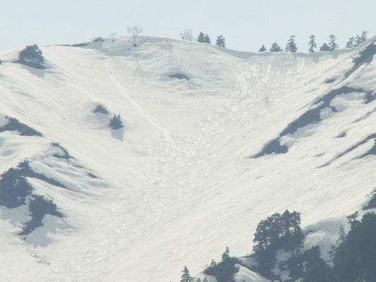 料金所から。滑ってきた白谷左股です。滑走の跡が見えます。
