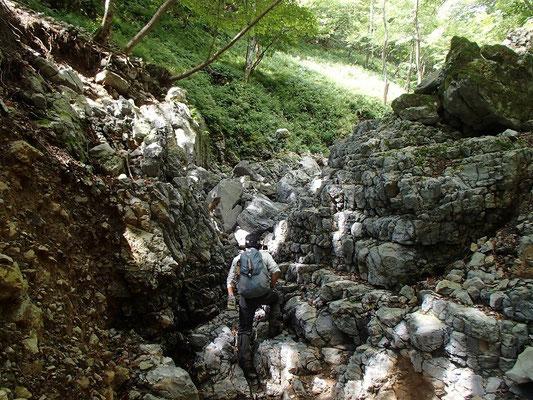 石灰岩の岩場を登ります