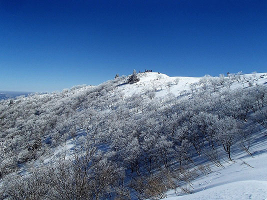 樹氷原の向こうに山頂が見えてきました