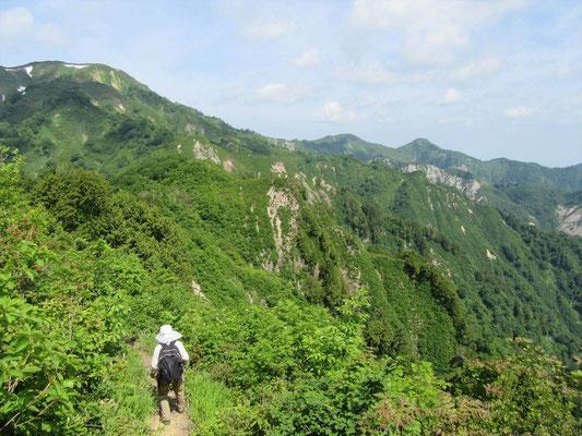 大笠山が見えるのに道は下っている。